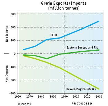korn_eksport_import